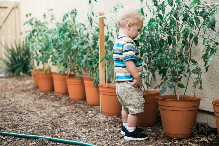 Full length of cute boy standing on potted plant