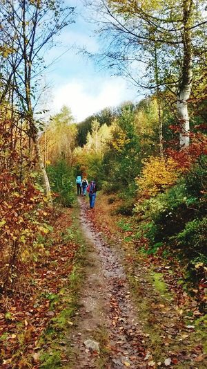 Walking Tree Nature Real People The Way Forward Forest Togetherness Leisure Activity Hiking Day Sky Outdoors People Growth Beauty In Nature Two People Men Women Full Length Lifestyles EyeEmNewHere Second Acts