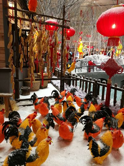 CNY2017 Rooster Year Indoors  Decoration Design Creative Colours Of Nature Roosters Dry Corn Houses And Windows REUNION TABLE Shopping Center Lanten Decoration Freshness Red Color Snow ❄ Flower View From Below Relaxing Taking Photos Happy Day Happynewyear Happy Moments