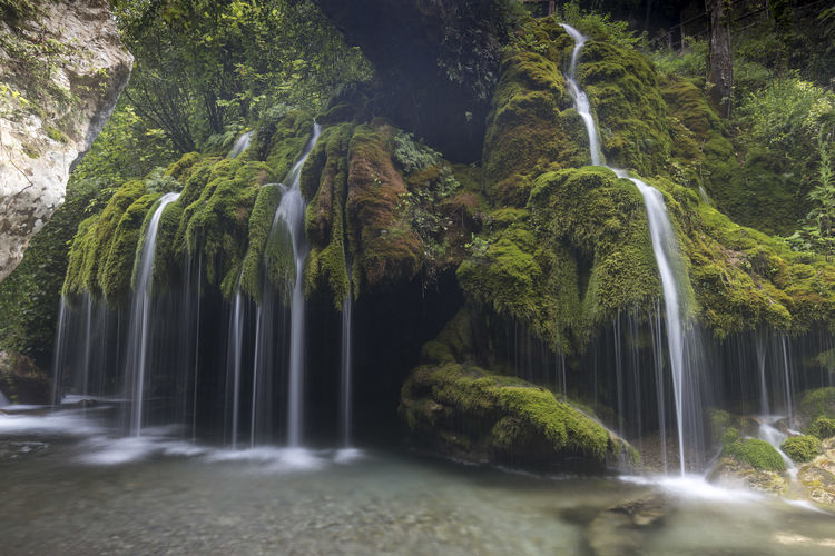 Capelli di Venere waterfalls Capelli Di Venere Salerno Waterscape Capelli Casaletto Spartano Cilento Venere Waterfall Waterfall Photography Waterfall_collection Waterfalls