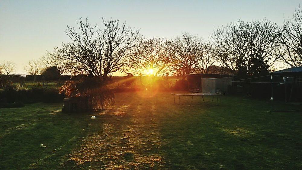 Sun Rise Spring