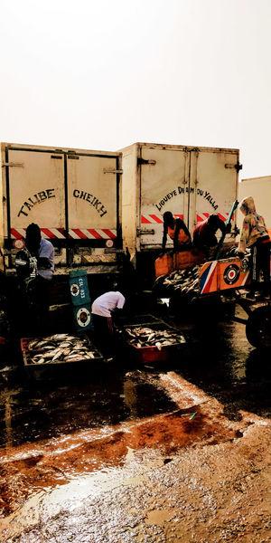 Saint Louis Senegal Poisson Pêcheur Fish Afrique Africa Oil Pump Water Sky