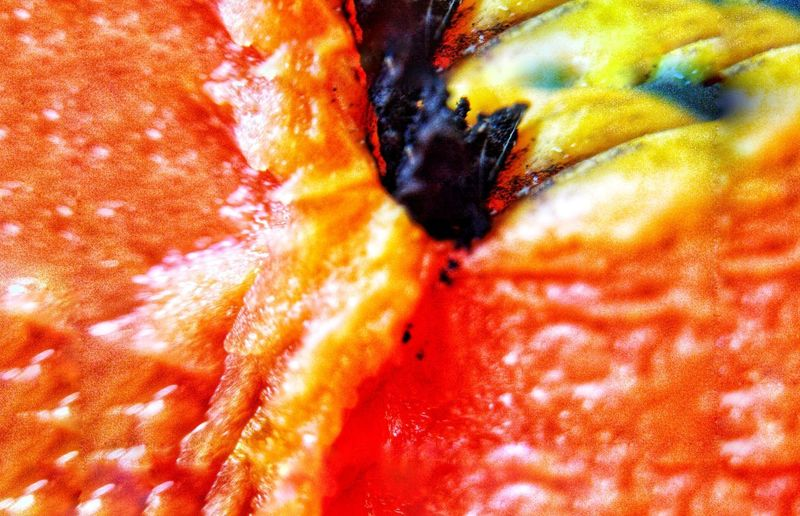 Juicy fruits Peaches🍑 Delicious Fruit Vitamins Juicy Healthy Eating Natural Light Multi Colored Abstract Backgrounds Red