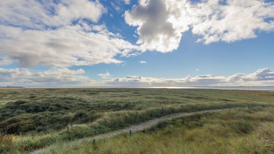 Beauty In Nature Clouds Day Grass Horizon Island Landscape Langeoog Nature Nature Nature Photography No People Outdoors Path In Nature Scenics Sea Sky Weather Wind