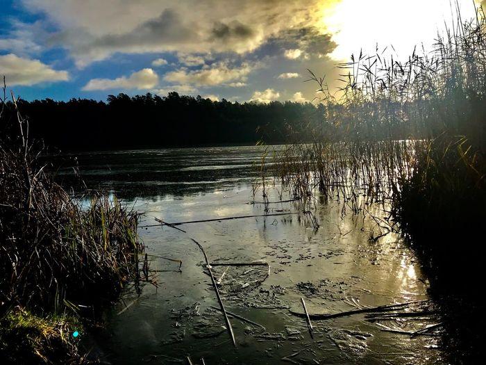 Träumen am Omulew See in Masuren/Polen Traumhaftschön Poland Masuren Sky Water Cloud - Sky Nature Plant Tree Scenics - Nature Sunset Beauty In Nature No People Lake Sunlight Outdoors Reflection