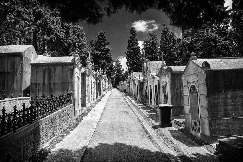 ✨Hallelujah✨Leonard CohenThe Way Forward No People Built Structure Shadow Sky Architecture Lisboalovers Lisboa, Portugal Lisbon Cemitério Dos Prazeres Prazeres Graveyard Beauty Graveyard Gravestones Mausoleum Series Mausoleum Architecture Black&white Eyeem Market Bnw_shadows Bnw_friday_eyeemchallenge Architecture Photography Black And White Collection  Black And White From My Point Of View Second Acts Perspectives On Nature Rethink Things Postcode Postcards EyeEmNewHere Be. Ready. Black And White Friday Step It Up One Step Forward EyeEm Ready   AI Now An Eye For Travel The Graphic City Colour Your Horizn Modern Workplace Culture Stories From The City Go Higher This Is Aging This Is Family Visual Creativity Summer Exploratorium Adventures In The City Focus On The Story #FREIHEITBERLIN The Architect - 2018 EyeEm Awards The Street Photographer - 2018 EyeEm Awards The Traveler - 2018 EyeEm Awards The Creative - 2018 EyeEm Awards Summer Road Tripping
