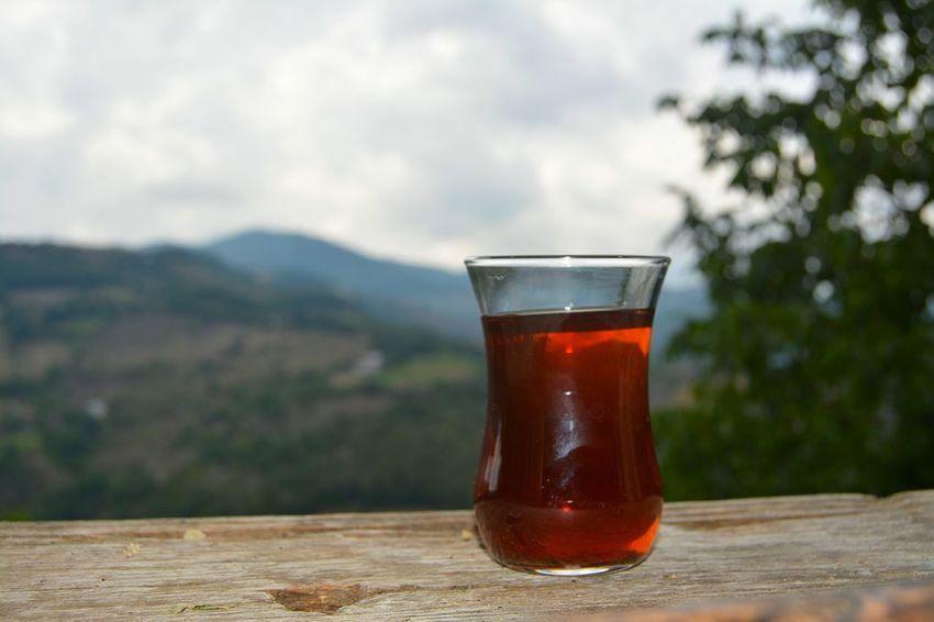 çay Karadeniz Ordu Tea