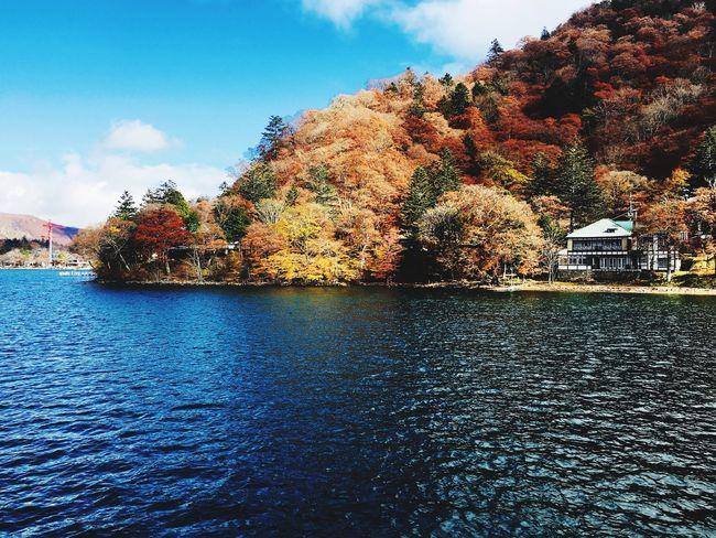 空 反射 自然 山 青空 紅葉 男体山 湖 カラフル 中禅寺湖 絶景 日光 彩 Sky Tree Water Cloud - Sky Plant Nature Waterfront Beauty In Nature Tranquility Scenics - Nature No People Tranquil Scene Day Outdoors Reflection Blue Rippled EyeEmNewHere