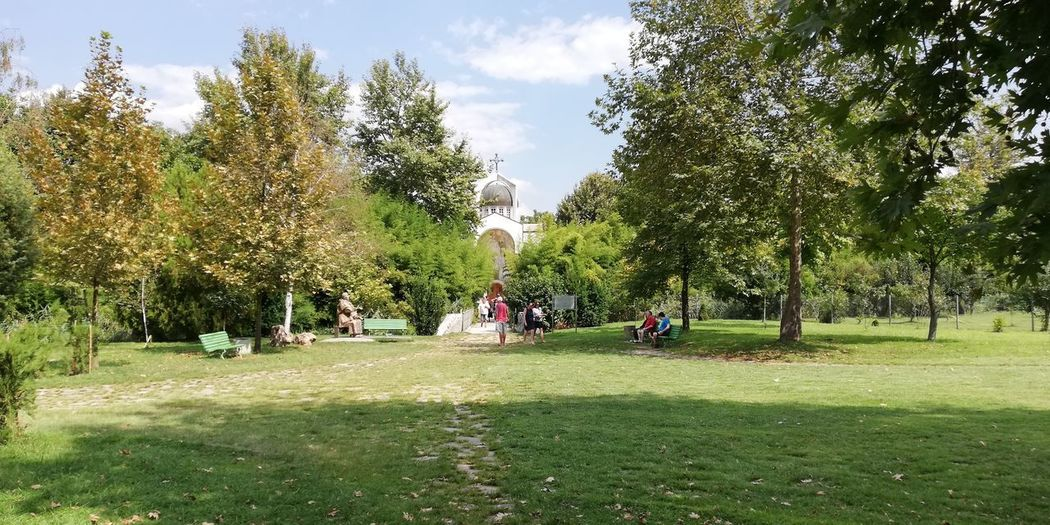 Tree Men Park - Man Made Space Women Sky Grass Green Color
