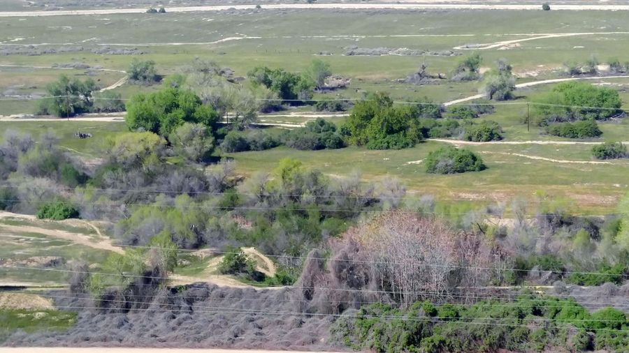 Thebluffs Viewfromabove BakersfieldCA Kerncounty Greenery Springtime Fieldbelow Wontbegreenforlong Beautifulview Greatdayforawalk Niceweather