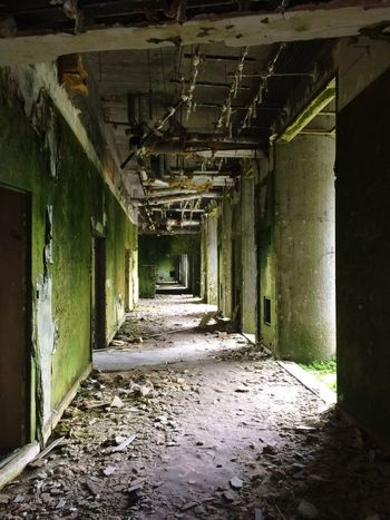 Corridor Empty Abandoned No People Indoors  The Way Forward Greenwalls Urbex Old Buildings Abandoned Places Oldhotel Lost Places Creepy Disturbing Scary Stuff  Damaged InTheMiddleOfNoWhere Island Adventure Door