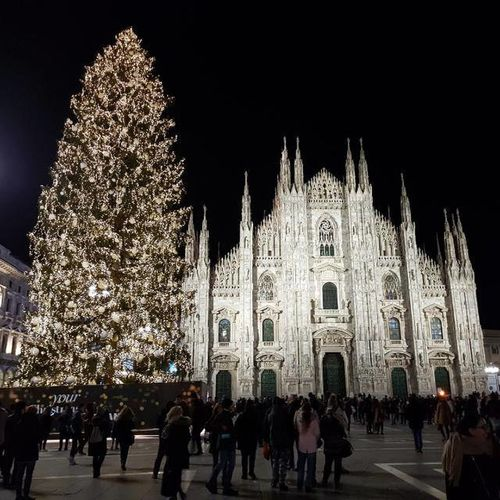 Large Group Of People Vacations Religion Night Illuminated Christmas Decoration Architecture Real People