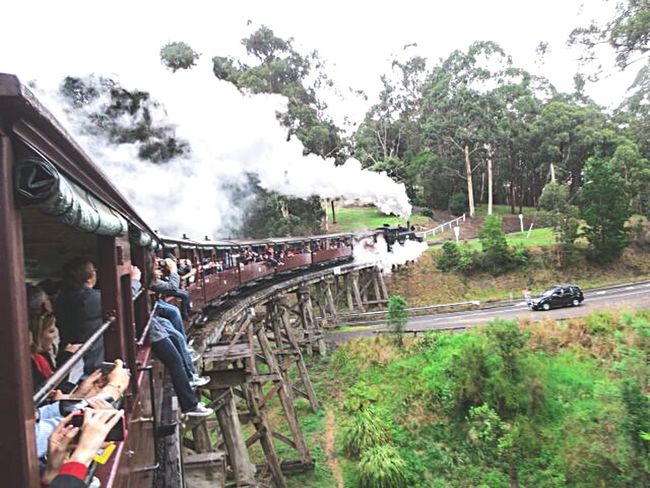 Puffing Billy in the Dandenong Ranges Victoria Australia. Puffing Billy Dandenong Ranges
