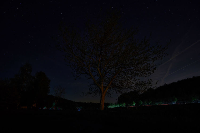 Night on river Moselle Astronomy Astrophotography Bare Tree Beauty In Nature Dark Glowing Idyllic Illuminated Landscape Long Exposure Longexposure Majestic Nature Night No People Scenics Sky Tranquil Scene Tranquility Tree