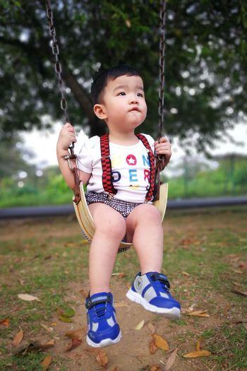 Cute boy sitting on swing in playground