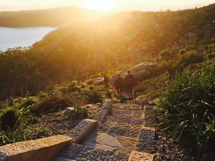 Path Sun Friends Outdoors Sunlight Sunset Stairs Nature Sunset Silhouettes Yellow Fun Enjoying Life Way