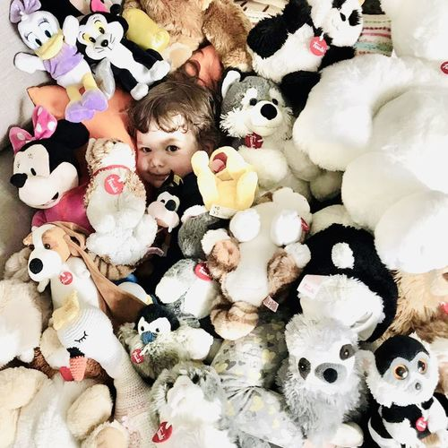 High angle view of stuffed toys