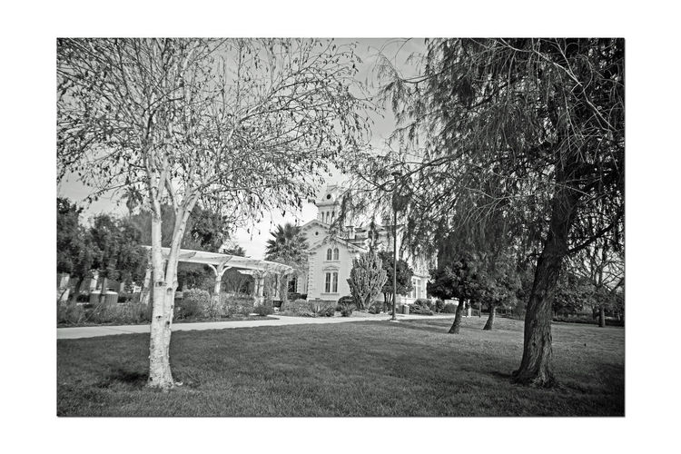 Meeks Mansion @ Cherryland 5 Historic Landmark 10 Acres Built 1869 Owner William Meek View Thru Trees 27 Rooms, 3 Floors With A Cupola Grounds Include Carriage House & Gazebo Orchards : Cherry, Apricots, Plums & Almonds Bnw_friday_eyeemchallenge Architecture Architecture : Victorian Style: Second Empire, Italian Villa Architecture_collection Architecture Details Trellis Architecture Photography Monochrome Black & White Black And White Landscape Black And White Collection  Black And White Photography Landscape_lovers Landscape_Collection