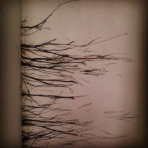 Root Through