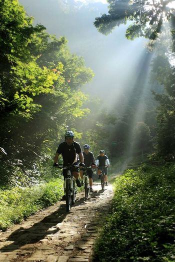 Sunshine Fog Cyclists Enjoying Life