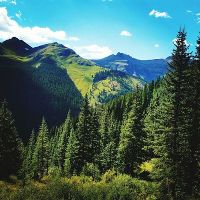 EyeEm Selects Mountain Nature Summer Colorado
