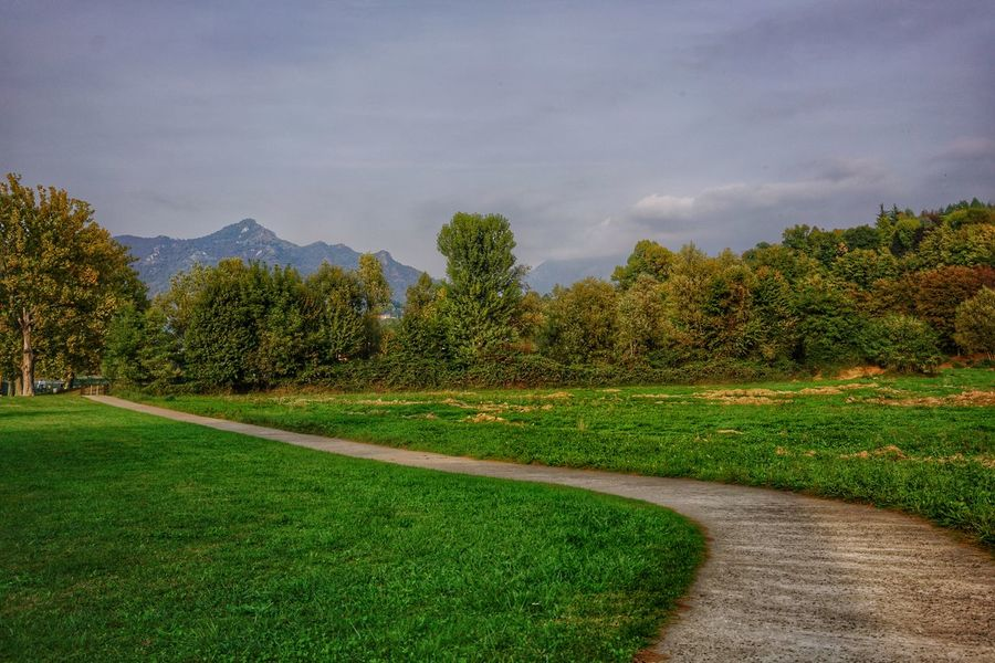 path into the green Lombardia Italy Lucariva Travel Sony A7r2 Oggiono Pathway Path In Nature Green Grass Trees Fe35f28z Tree Sky Grass Green Color Empty Road Tranquil Scene Tranquility