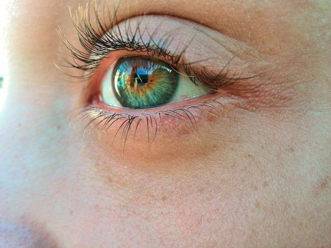 Let's go and see the world. Human Eye Eyelash Blueyes Iris - Eye Thefuture Green Eyes Vision EyeEmNewHere One Person Venezuela