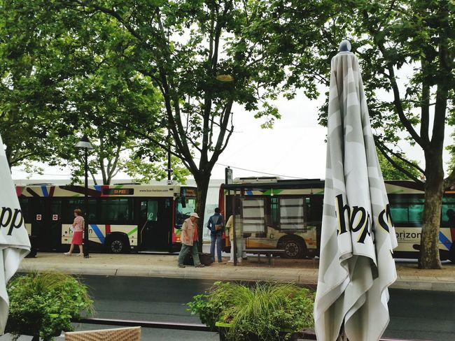France Transportation Bus Stop People Chateauroux France 🇫🇷