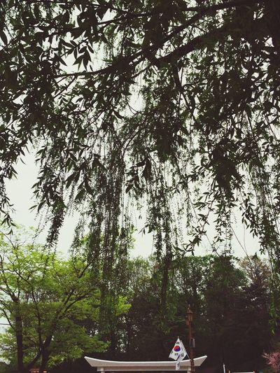 4.19 뜀박질 Rest In Peace At The Park