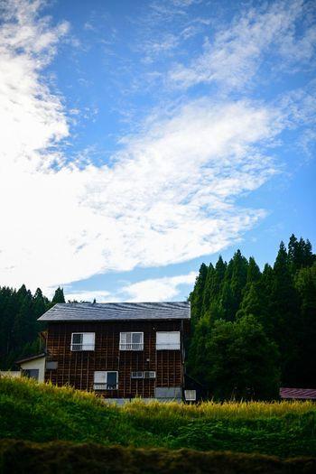 牧歌的な空間に佇む家。 Plant Sky Built Structure Architecture Cloud - Sky Grass Building Exterior Tree Field Nature Land Day Landscape No People House Rural Scene Green Color Residential District