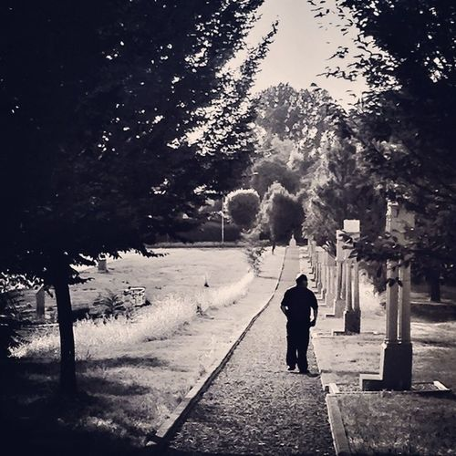 #alone #walk #shade #summer #lifeisbeautiful #italy #igersreggioemilia #convento #frati #scandiano #B&W #iphonography