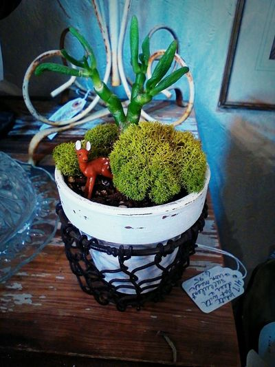 Deer Green Spring Has Arrived Cute Fake Deer Greenery Moss Plant Pot Holder Potted Plant Small Small Scale Spring spring into spring Springtime Succulent Sweet Toy Deer White Pot White Pots, Green Plants,