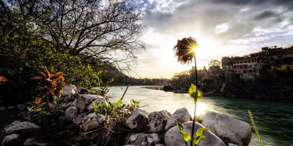 View to the Ganga river in Rishikesh (India) Beauty In Nature Cloud - Sky Nature Outdoors Water Flower India Ganga River Sun Sun Beams Patterns In Nature River The River Is Flowing Sunset Sunset Ganga The Secret Spaces