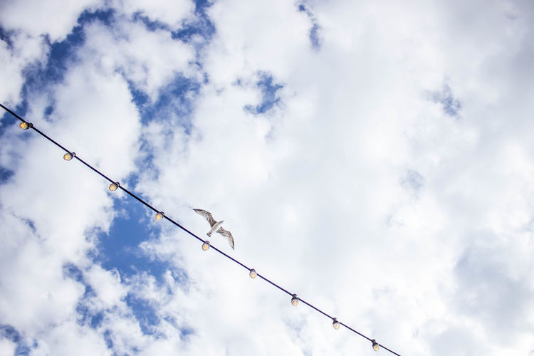 Low angle view of birds on cable against cloudy sky