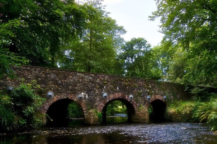 Arch Architecture Tree Bridge - Man Made Structure Built Structure Growth No People Nature Outdoors Day Water Sky Minnowburn Lagan River Riverbank