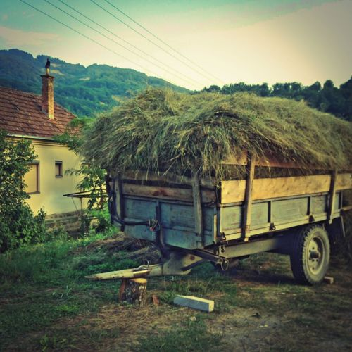 Late Summer Memory EyeEmNewHere Village House Mountain Landscape Nature Open Edit Rural Life Grass Rural Scene No People EyeEm Nature Lover Eye4photography  Green Is Green