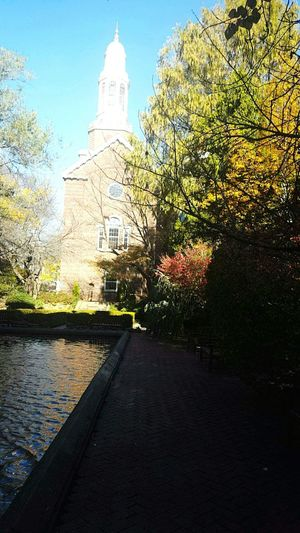 Brooklyn BrooklynCollege Lilypond Library College College Campus Autumn Outdoors No People
