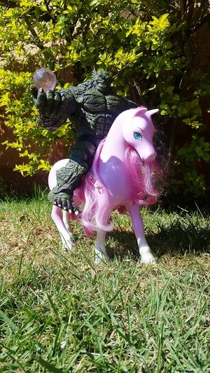 Poney Orcs Transportation Toys Brutal Power Pink Forest Wild The Adventure Handbook