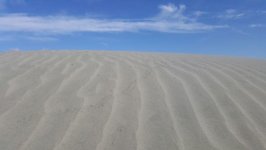 Arid Arid Climate Arid Landscape Barren Beach Brown Copy Space Desert Distant Exploring Extreme Terrain FootPrint Landscape Lines Natural Pattern Outdoors Remote Sand Sand Dune Sand Dunes Sky Tranquility