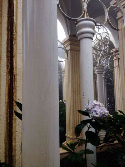 Architectural Column Built Structure No People Architecture Curtain Building Exterior Day Low Angle View Indoors