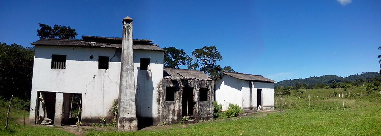 architecture, built structure, building exterior, sky, plant, building, nature, grass, clear sky, no people, tree, house, day, old, land, residential district, blue, field, outdoors, abandoned