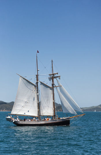 Sailing Ship in Bay of Islands, New Zealand Bay Of Islands Brigantine New Zealand Scenery Passenger Ship Sailing Ship Cruising History Large Mast Nautical Vessel New Zealand Old People Rigging Sail Sailboat Sailing Sailing Boat Sea Ship Side View Tourism Transportation Two-master Water