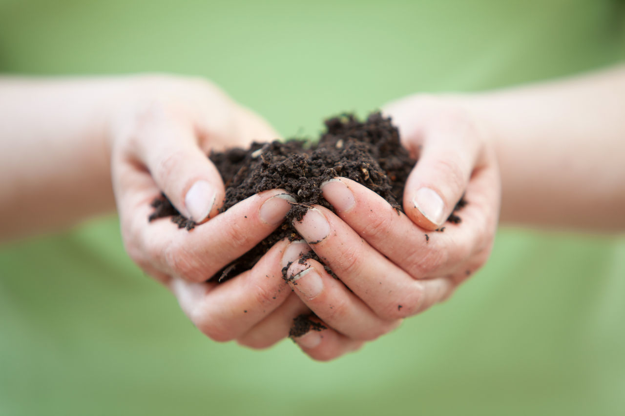 Close-Up Of Woman With Soil In Hands