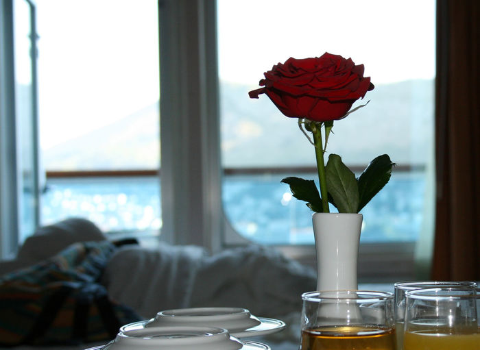 Close-up of red rose in glass vase on table at home