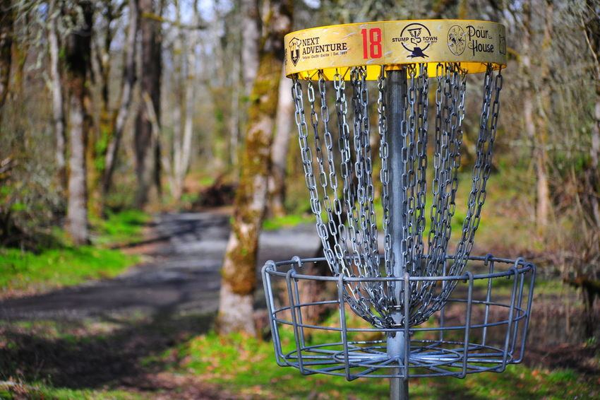 Beauty In Nature Close-up Communication Day Disk Golf Hole Food Forest Nature No People Outdoors Plant Text Tree
