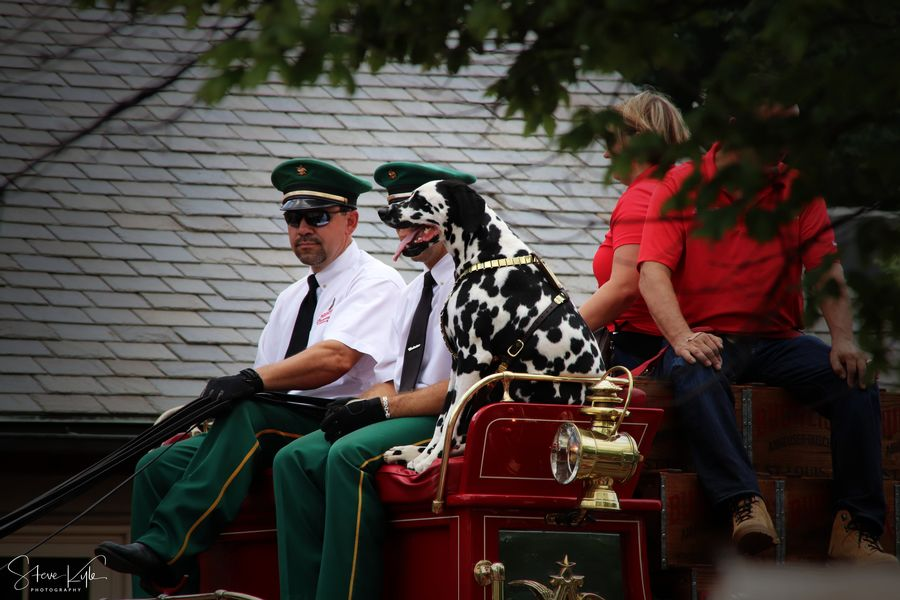 Anheuser-Busch Clydesdales Day Lifestyles Men Outdoors People Real People Standing Sunglasses Togetherness Two People Young Adult