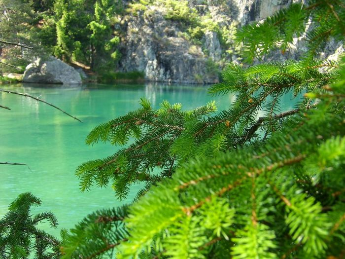 EyeEm Nature Lover Intothewild Nature_collection Nofilter#noedit Nature Kodak Lake View Lake Italy Alps