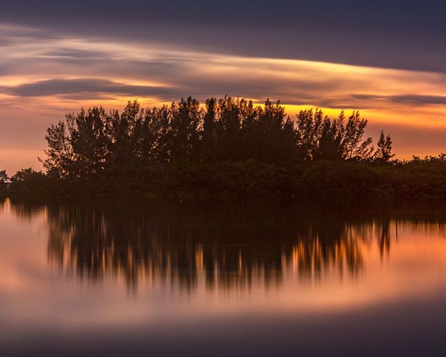 Sunset Tree Plant Sunset Beauty In Nature Water Sky Scenics - Nature Tranquility Nature Reflection Lake Tranquil Scene Cloud - Sky Orange Color No People Silhouette Growth Idyllic Outdoors Coniferous Tree