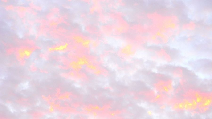 Pastel Power Sunrise&sunset My cotton candy sky while enjoying a beautiful early Santa Monica morning!