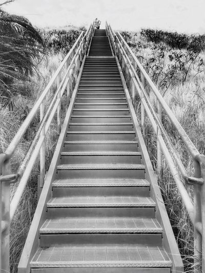Stairs Diamond Head The Way Forward Nature Landscape Walk To The Top Blackandwhite Hawaii Outdoors Nature Traveling